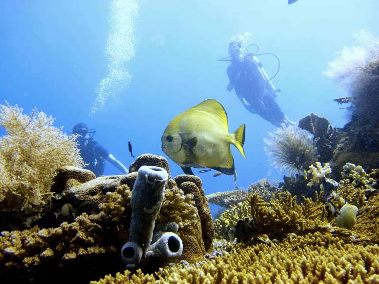 Für Abenteuer mit Meer-Wert