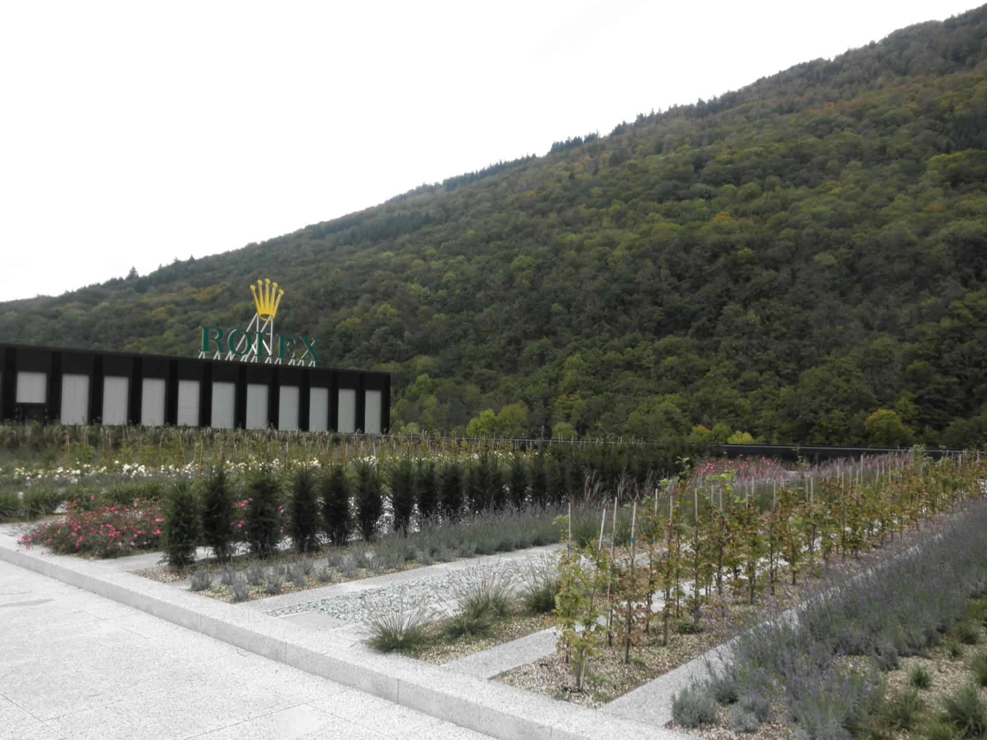 Die Rolex Werkefabrik in Biel hat auch einen ökologisch angelegten Dachgarten - Foto GLB