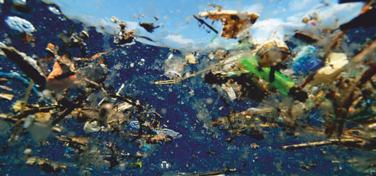 Plastikmüll als Teppich im Meer